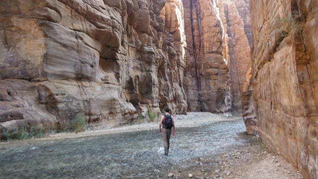 Jordan Mujib Nature Reserve