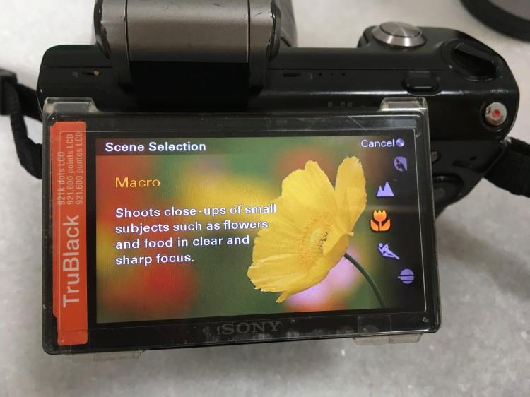 Sony Nex 5 Macro mode