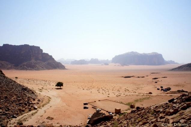 jordan-wadi-rum-tree-valley
