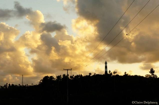 brazil-jungle-sunset