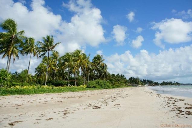 brazil-beach-white-sand