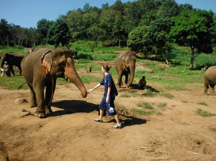 Claire Imaginarium in Baan Chang Elephant Park Chiang Mai Thailand