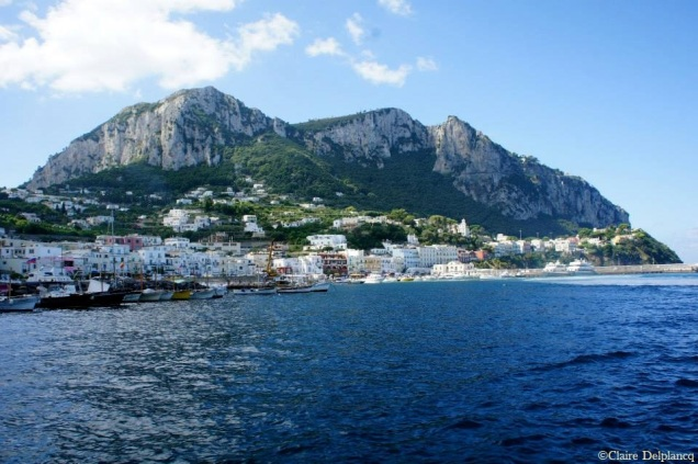 capri-island-harbour
