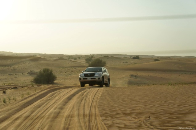 Dubai-dunes-desert-safari
