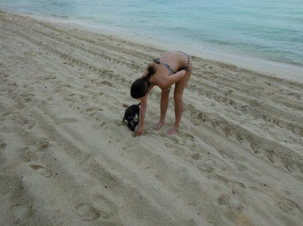 Thailand Koh Phi Phi beach
