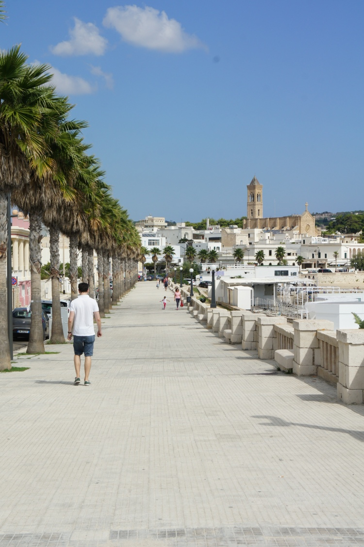 Palm tree seafront in Leuca