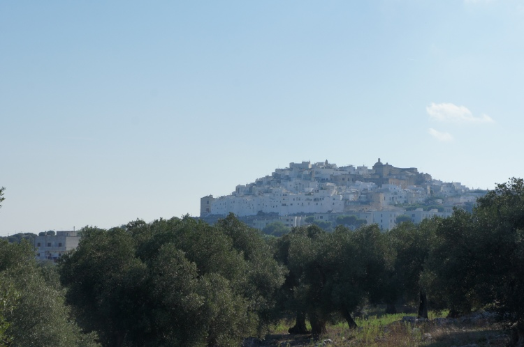 Ostuni at the top of the hill