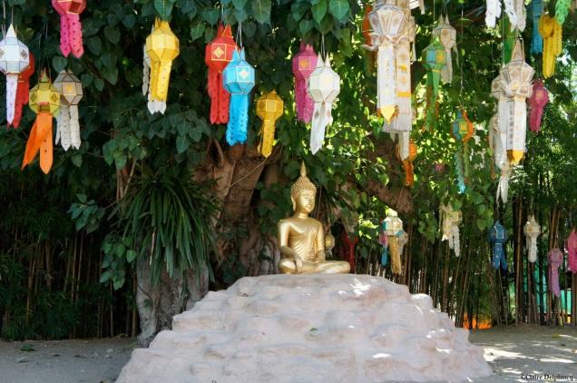 Thailand-Chiang-Mai-buddha-lanterns