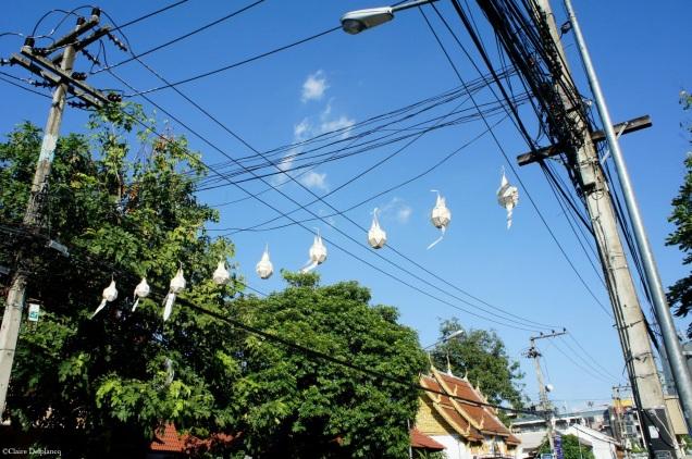 Thailand-Chiang-Mai-lanterns