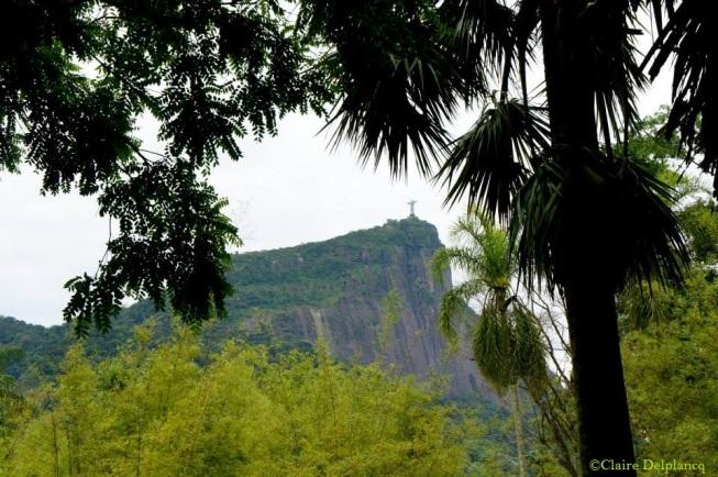 Brazil-Rio-de-Janeiro-botanical-garden-Christ-redeemer
