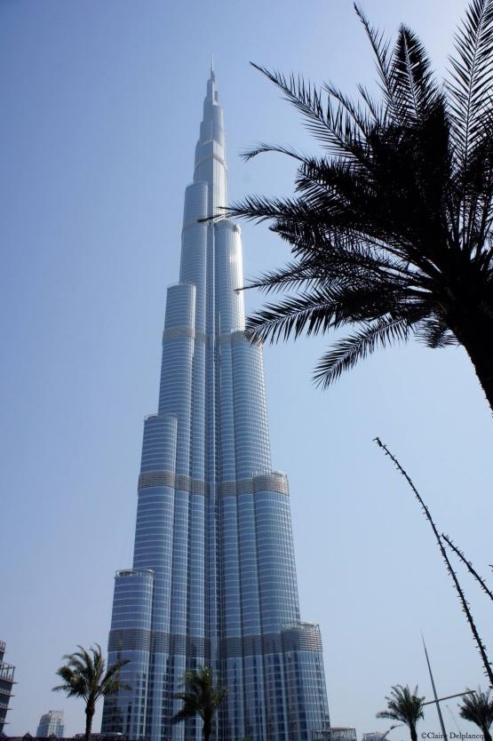 Dubai Burj-Khalifa palm trees