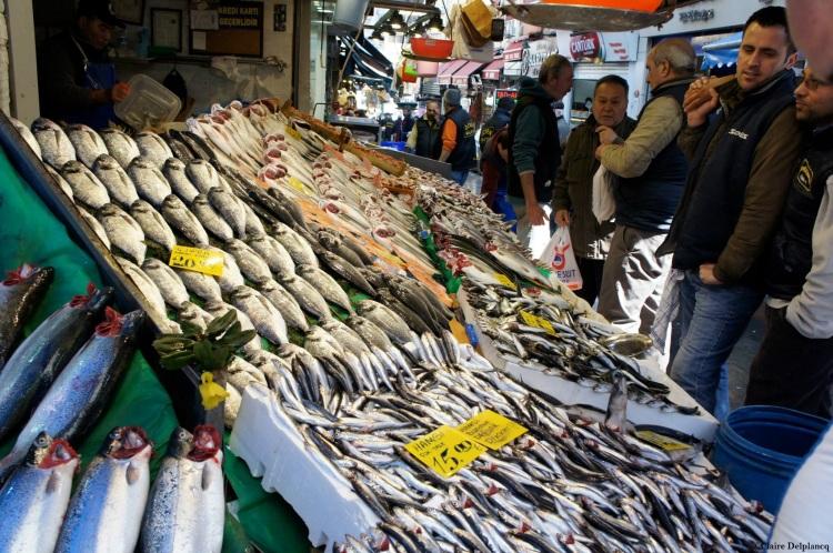 Istanbul-market-fish