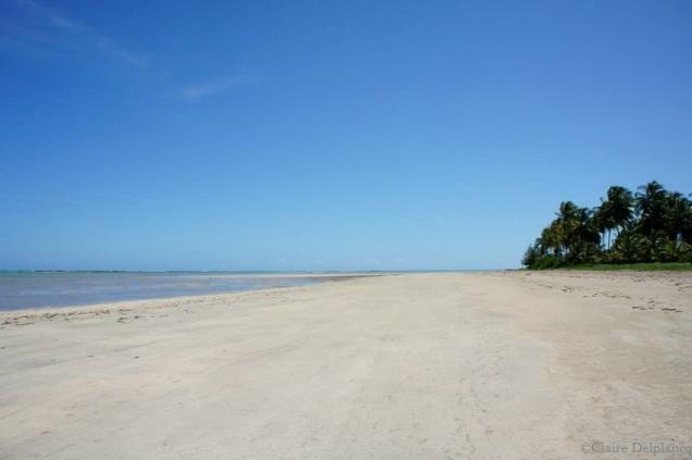 Brazil white sand beach