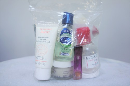 carry on skincare bag