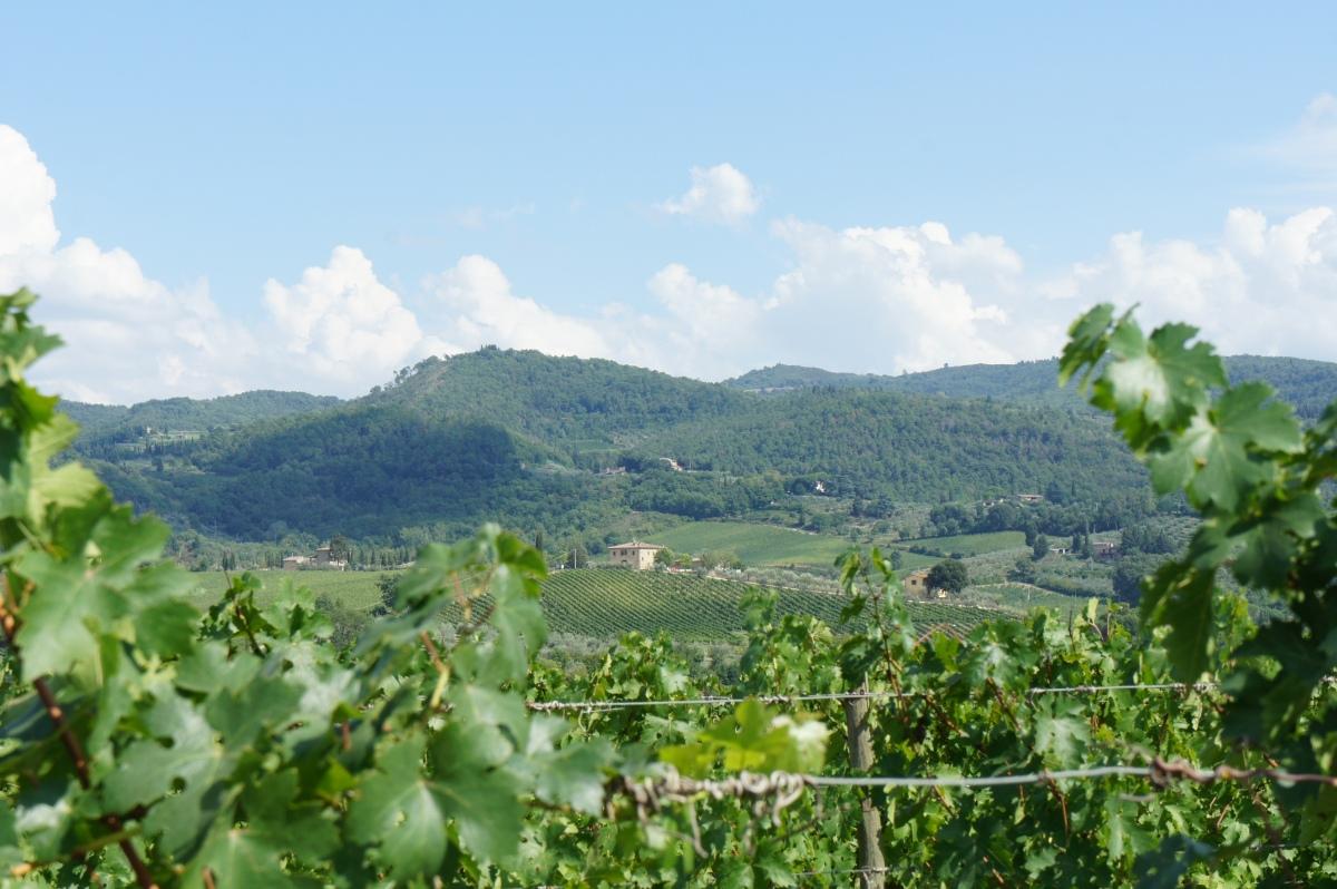 Wine tasting at Viticcio - Tuscany, Italy