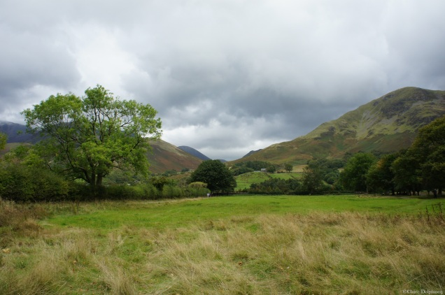 Green field Lake District Cumbria