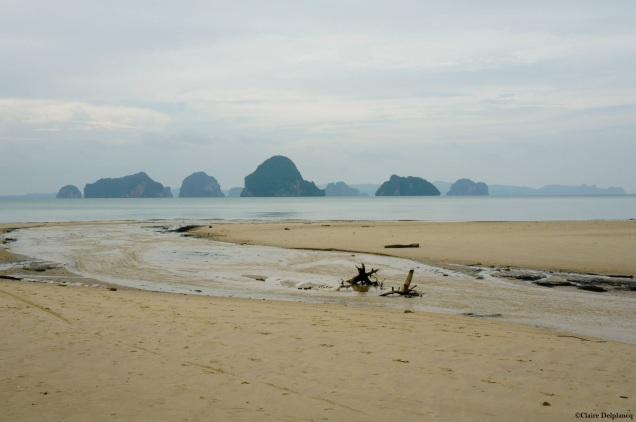 Krabi cloudy beach