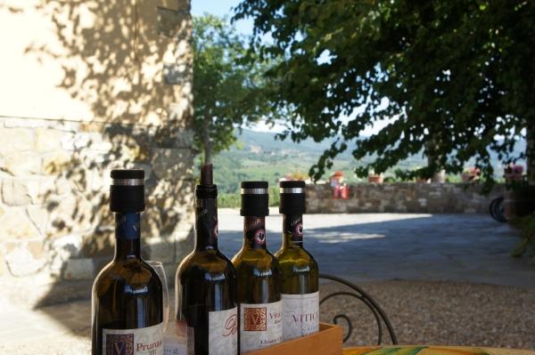 Wine tasting Viticcio