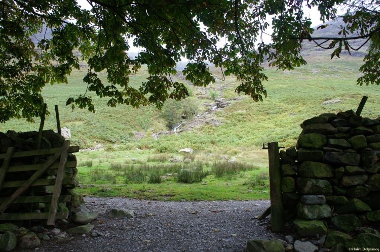 countryside gates Lake District Cumbria