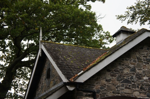 Moss on cottage roof in Lake District