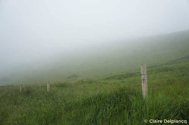 Durdle Door misty day