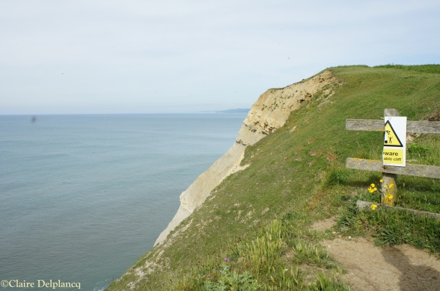 Cliff in West Bay