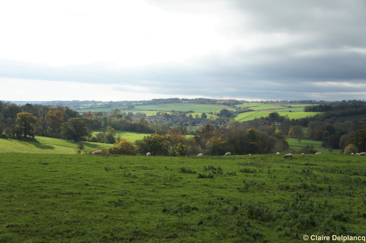 Cotswolds valley