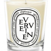 Best Diptyque candles