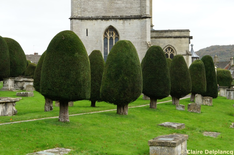 Painswick church trees