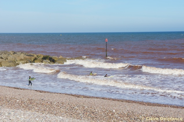 Surfers in Sidmouth