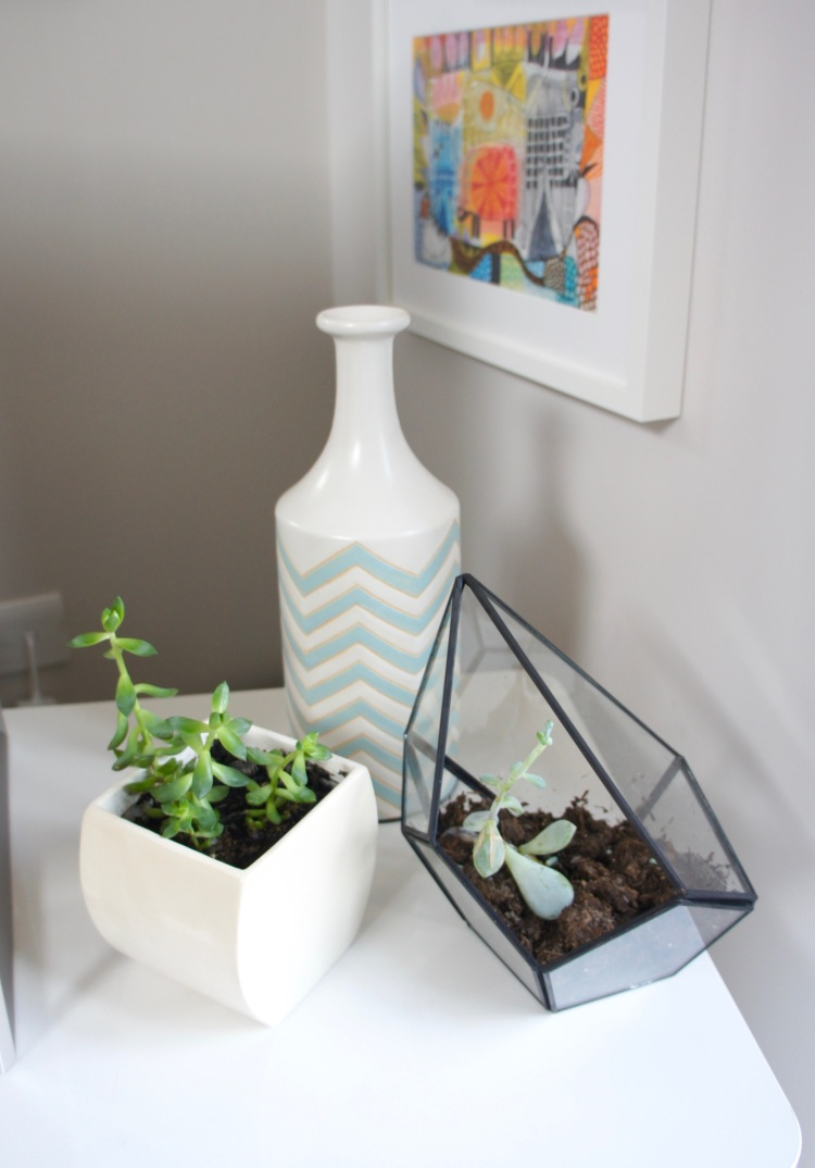 Succulents in living room and Oliver Bonas terrarium