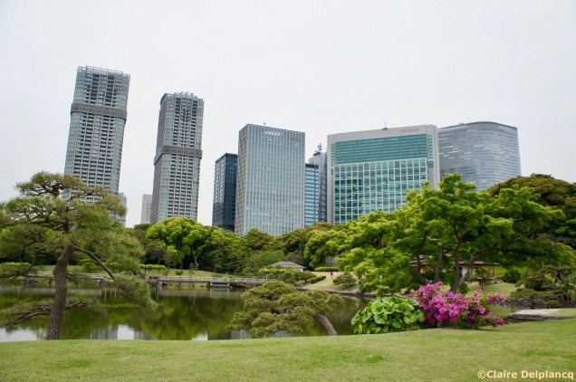 Hamariku Gardens in Tokyo