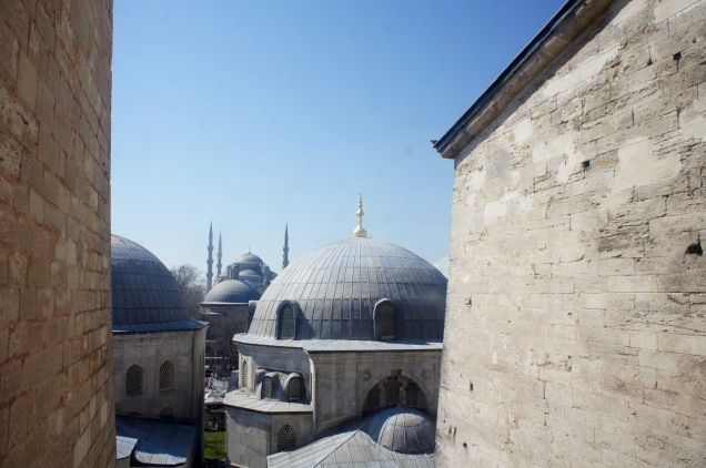 Istanbul's roofs