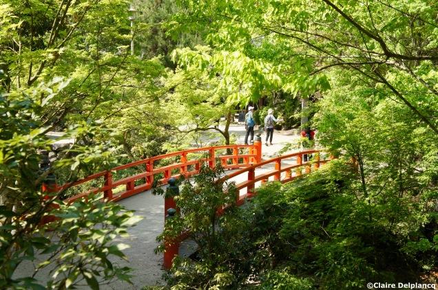 Red bridge in Miyajima