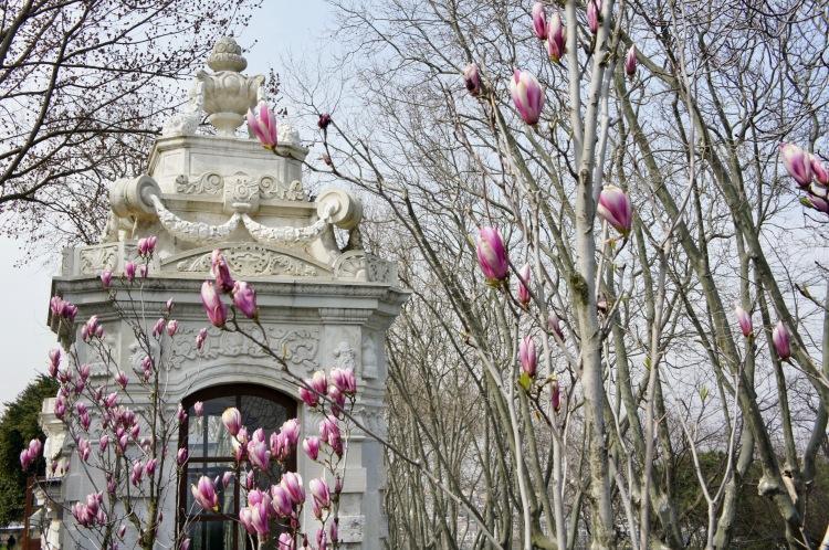 Topkapi Palace garden in Istanbul