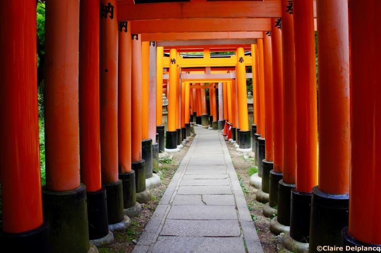 Fushimi torii gates Kyoto