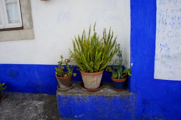 Plants in street of Obidos