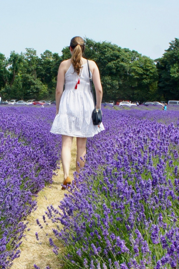Claire Imaginarium in Mayfield Lavender