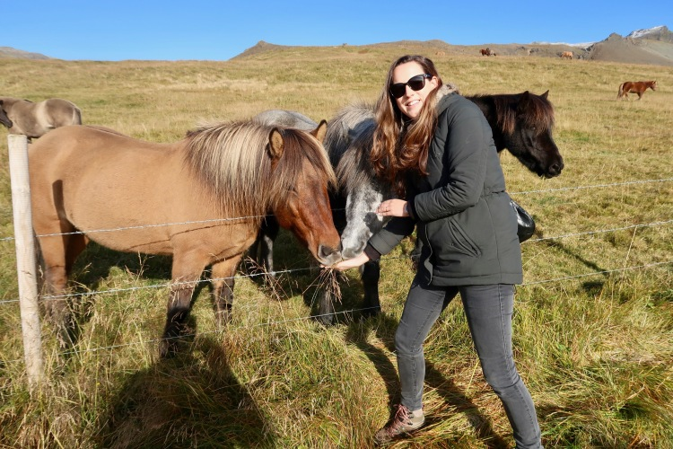 Claire Imaginarium with horses in Iceland