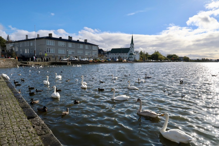 Tjornin lake Reykjavik