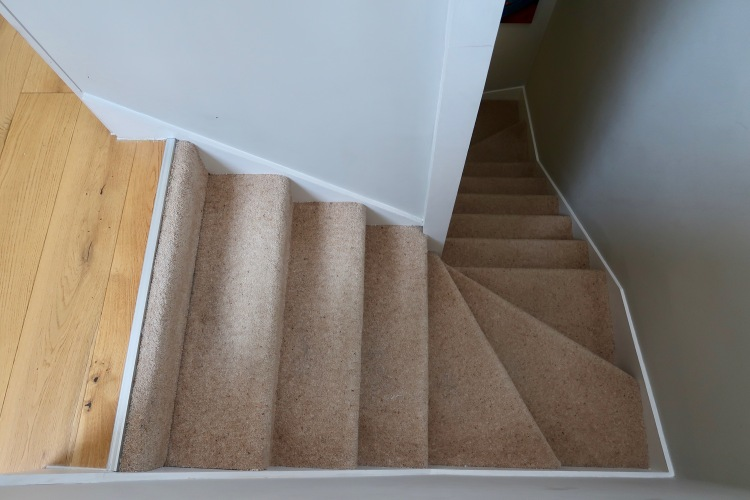 Carpeted staircase before