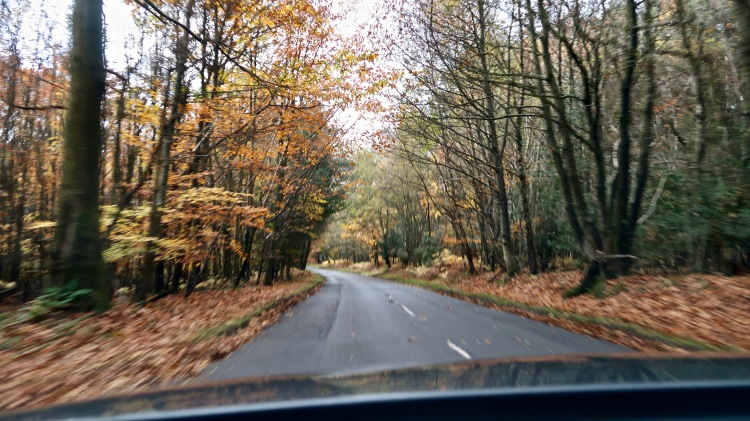 English country road - A day in Lewes