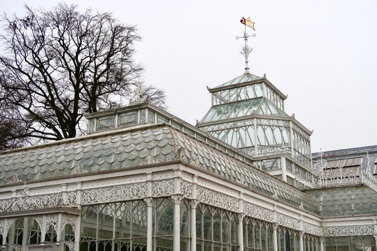 The Horniman Museum conservatory
